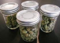 Marijuana Containers