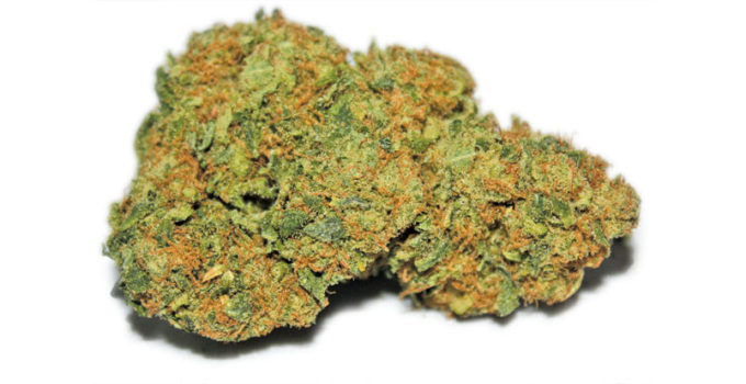 Mothers Finest Indica